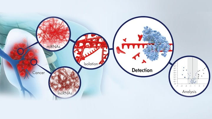 Discover innovations to isolate mRNA and miRNA