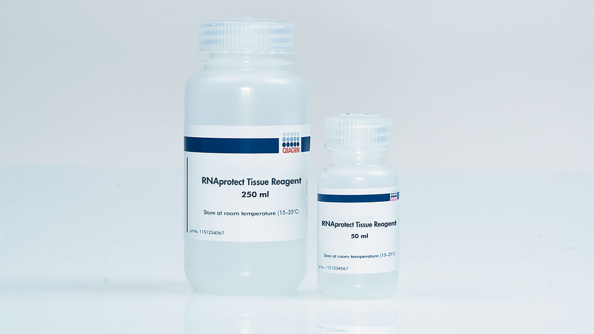 RNAprotect Tissue Reagent