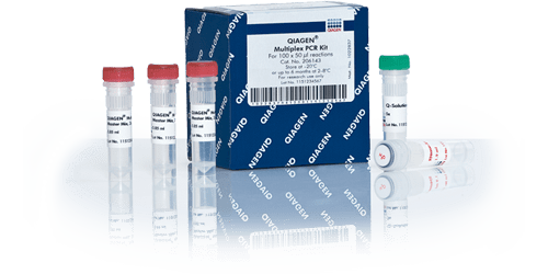 QIAGEN Multiplex PCR Kit