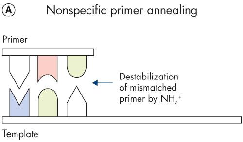 Online User-Guide MultiPlex PCR