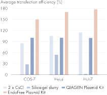 Plasmid purification method versus transfection efficiency.