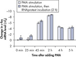 Effective inhibition of PMA induction.