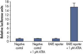 Verification of small molecule drug candidate.