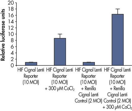 Advantage of using dual luciferase system.