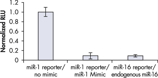 Comparable downregulation by endogenous miRNA and miScript miRNA Mimic.