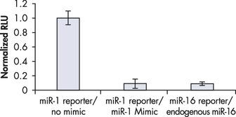 Comparable downregulation by endogenous miRNA and miScript miRNA Mimic.