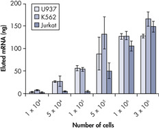 mRNA purification from suspension cells.