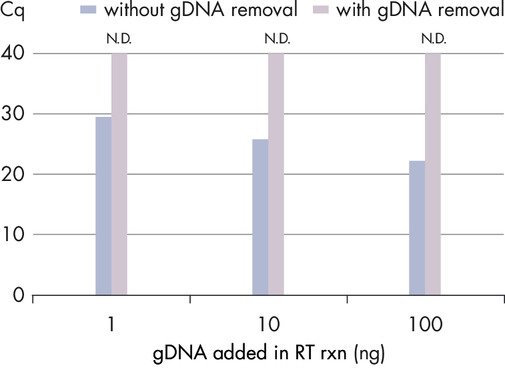 Efficient removal of contaminating gDNA ensures precise quantification of transcripts.