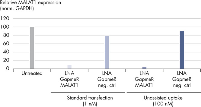 LNA GapmeRs can be used without a transfection agent.
