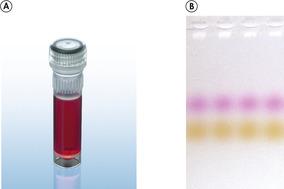 CoralLoad PCR Buffer.