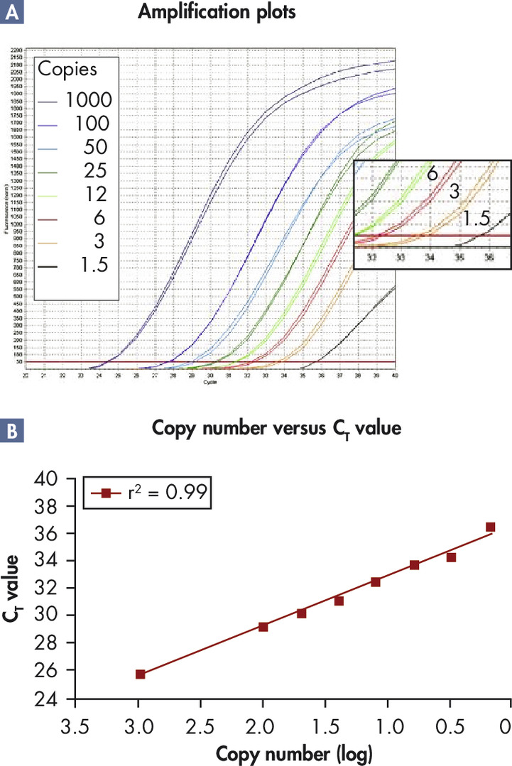 Resolution of small differences in copy number.