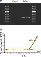 Methylation detection from FFPE tissue samples.