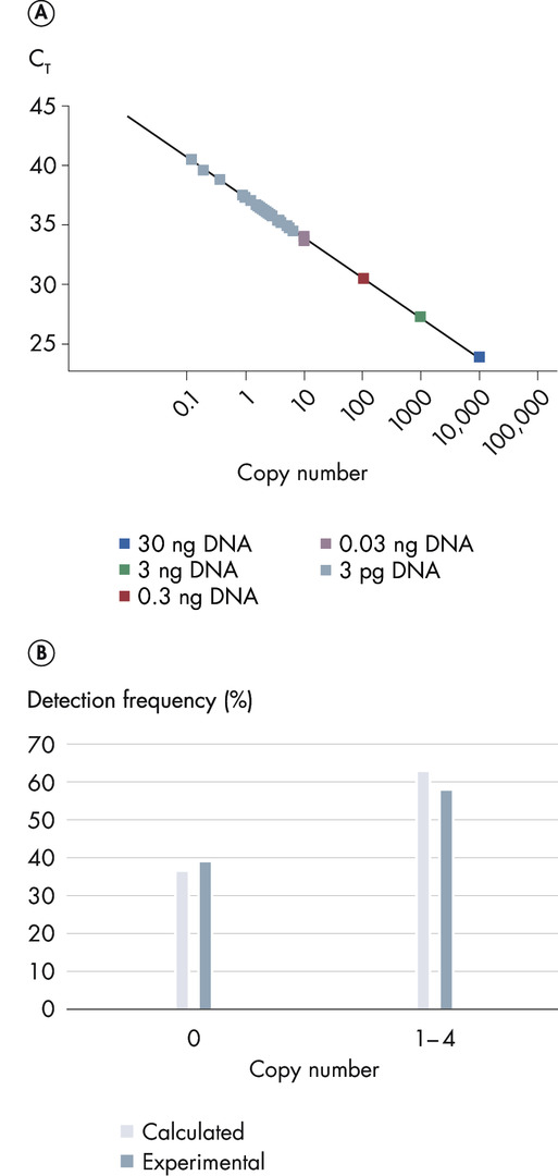 Sensitive and robust detection of a single target copy.