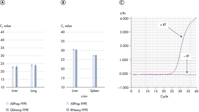 Reliable amplification of DNA and RNA from FFPE samples.