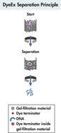 DyeEx separation principle.