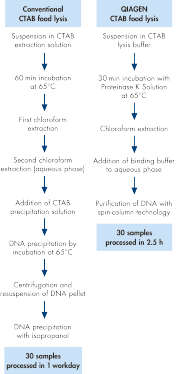 Efficient and rapid DNA extraction.