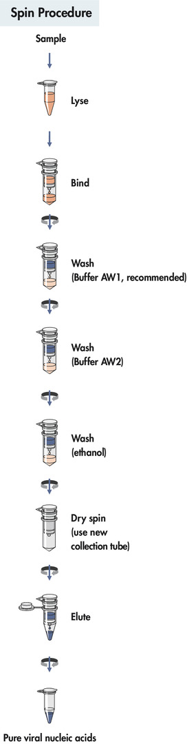 QIAamp MinElute Virus Spin procedure.
