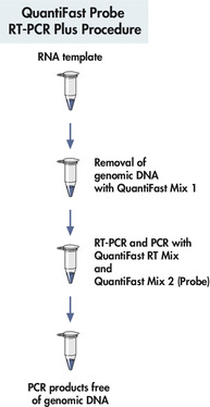 QuantiFast Probe RT-PCR Plus Kit procedure
