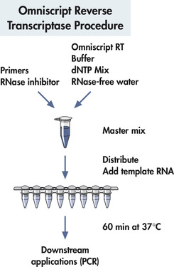 Omniscript Reverse Transcriptase procedure.