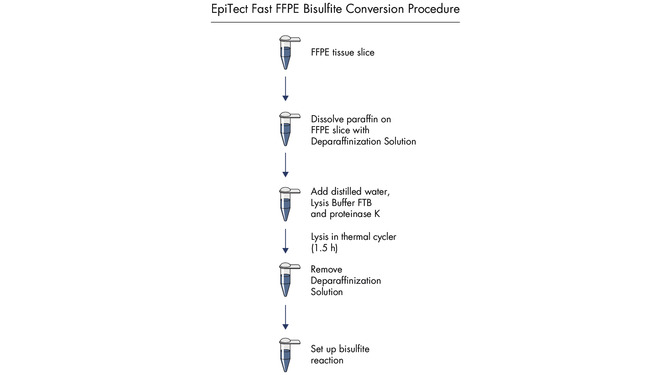 <p>EpiTect Fast 96 FFPE Bisulfite Kit procedure.</p>
