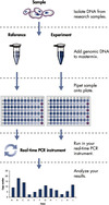 <p>Workflow for qBiomarker Copy Number PCR Arrays.</p>