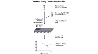 QIAseq Library Quant Array workflow