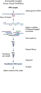 GeneRead DNAseq Targeted Panels V2 workflow.