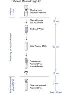 HighSpeed Plasmid Giga EF procedure