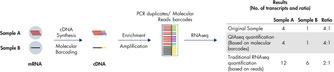 Digital sequencing (molecular barcodes) principle