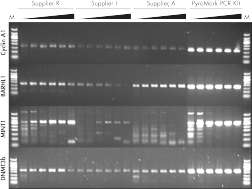 Superior results with PyroMark PCR Kit.
