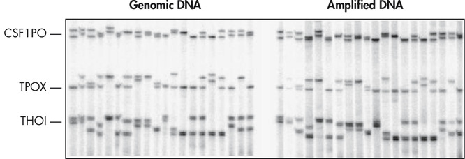 <p>Accurate genotyping.</p>