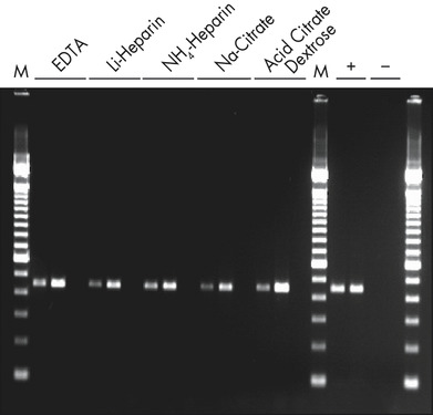 Reliable RT-PCR analysis.
