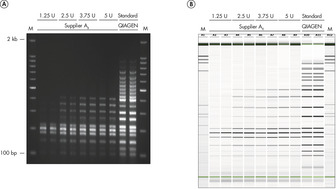 Efficient 19-plex PCR.