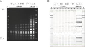 Efficient 19-plex PCR.