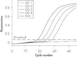 Reliable quantitation of the M. tuberculosis complex pathogen load.