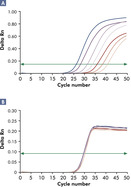 Reliable detection of viral RNA over a wide linear range.