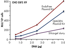 Plasmid purity versus transfection efficiency.
