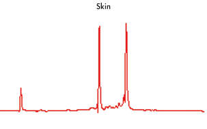 High-quality RNA from skin tissue.