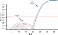 Successful real-time RT-PCR analysis.
