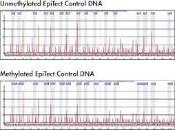 EpiTect Control DNA Pyrogram.