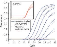Sensitive detection of Norovirus.