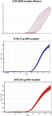 High precision in real-time PCR.