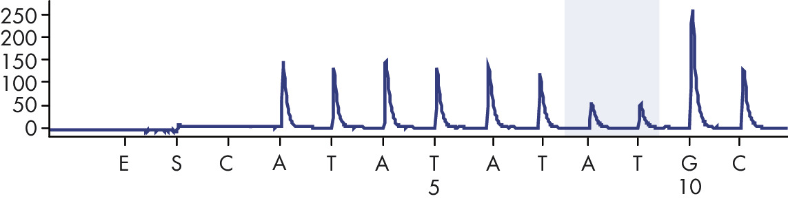 <p>Pyrogram trace obtained after analysis of a sample with –/TA (TA6/TA7) genotype when analyzed for allele variant *28.</p>
