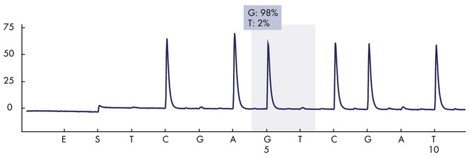 Pyrogram trace of a normal genotype in codon 768.