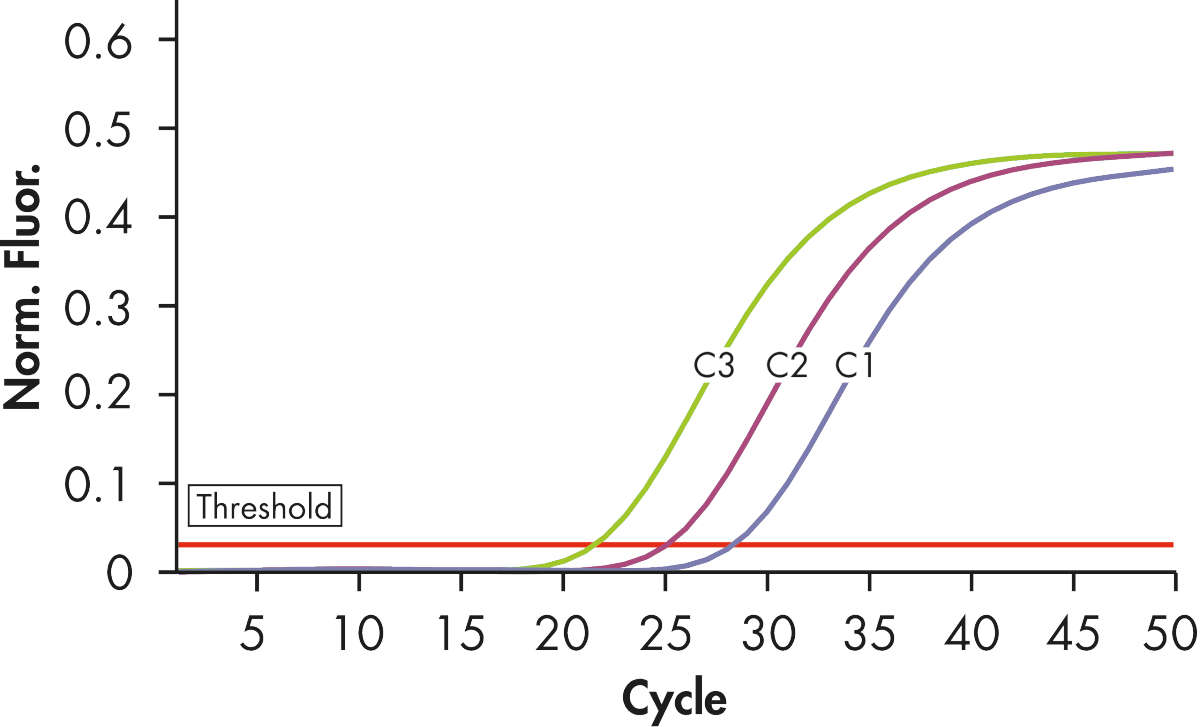 Reliable detection of ABL plasmid standards.