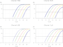 QIAquant: Sensitivity titration of male DNA and probes.