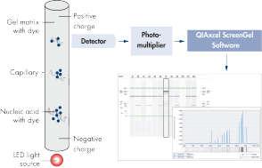 Sample separation process