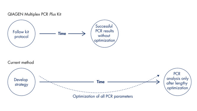 Successful multiplex PCR without the need for optimization.