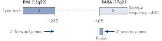 PML-RARA bcr3 gene transcript.