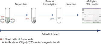 AdnaTest Detect – Multiplex PCR of various cancer-associated tumor markers